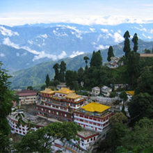 7 Day Darjeeling - Kalimpong - Gangtok Tour